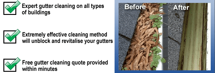 Before and after a gutter cleaners made their job