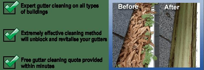 gutter-cleaner